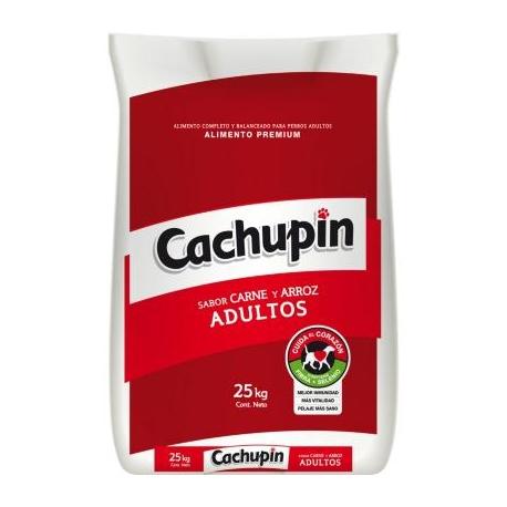 Cachupin 25k